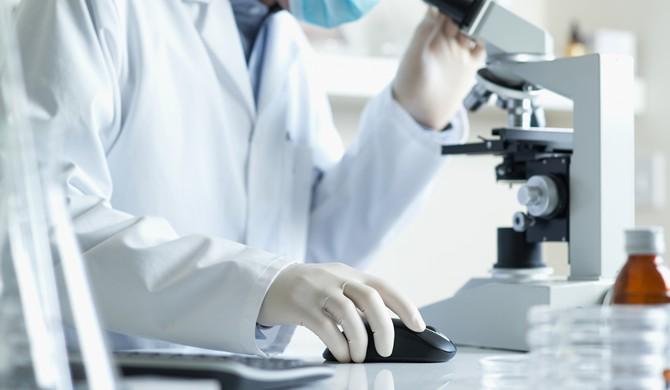 Un trasplante celular devuelve la vista a ratones