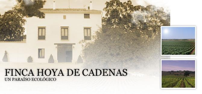 Excursión Hoya de Cadenas
