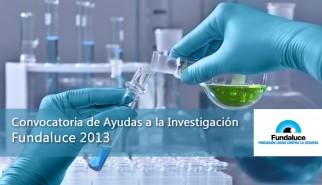 Ayudas a la Investigacion Fundaluce 2013