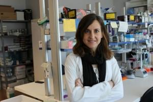 """""""Nuevas dianas para el tratamiento de la Retinosis Pigmentaria"""""""
